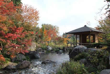臨江閣の紅葉