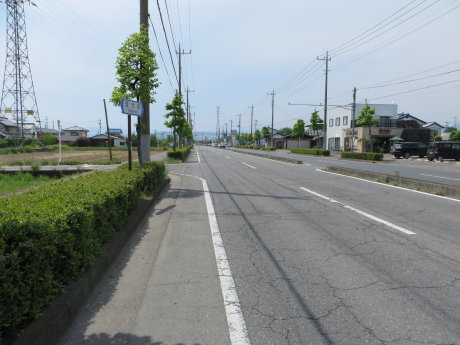 自転車で鼻高展望花の丘へ