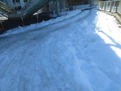 敷島公園の雪は
