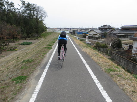 河津桜が見頃のいせさき市民のもり公園までサイクリング