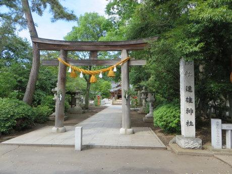 進雄神社の鳥たち