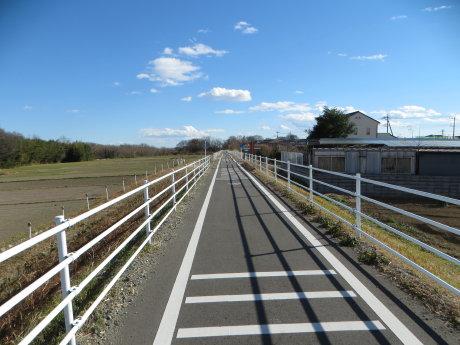 島村渡船までサイクリング!