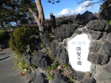この時期の須賀乃園