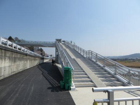 桜観音橋渡ってきました