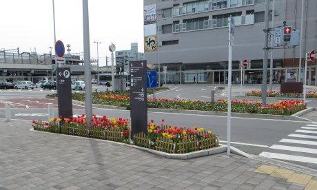 前橋駅前にチューリップが植えてあるのは