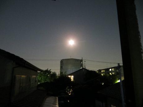 昨夜は満月で中秋の名月でした