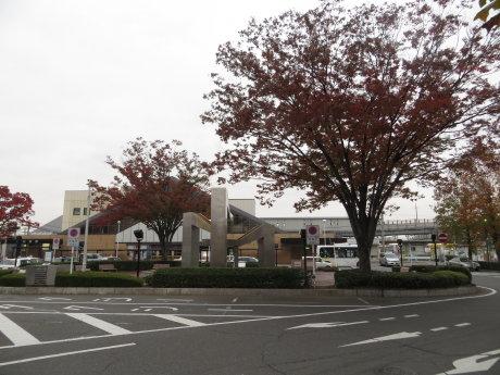 駅前の街路樹も紅葉