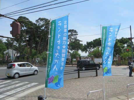 北関東400キロブルベ走行会