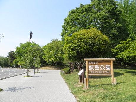 敷島公園まつりの様子