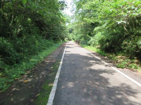 夏でも涼しいサイクリングロード