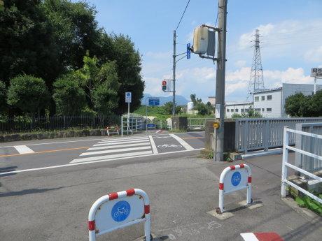 井野川サイクリングロードを行けるとこまで