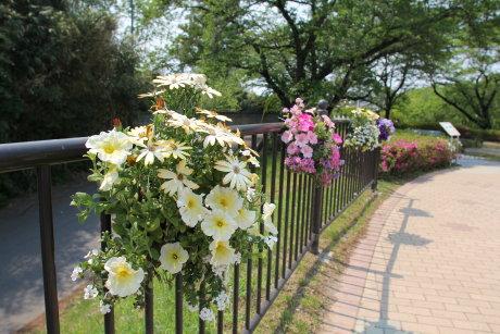 花と緑のぐんまづくり 2013 in 伊勢崎へ
