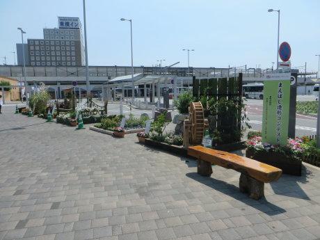 JR前橋駅北口広場で花と緑の造形コンテスト