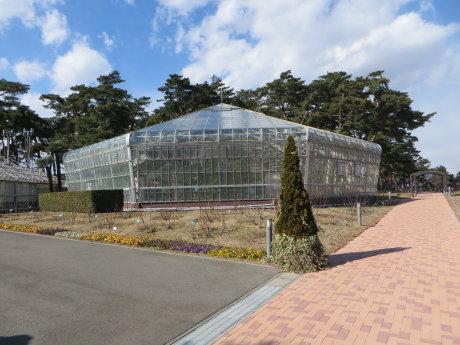 ばら園の温室工事