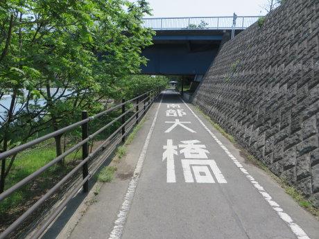 ふじの咲く丘までサイクリング