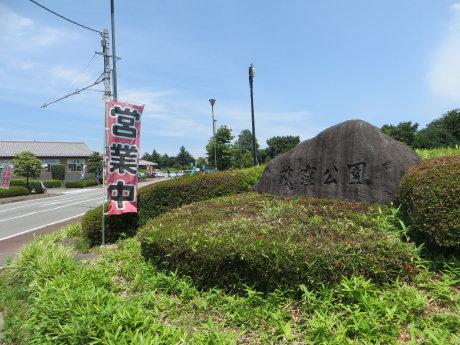 荻窪公園の紫陽花^^