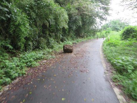 利根川サイクリングロードは落石やら通行止めやら