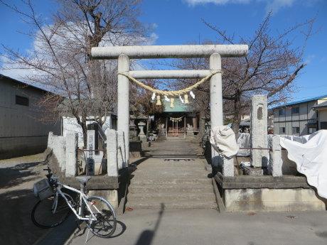 鏡神社の早咲きの桜は