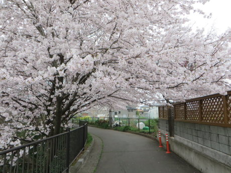 雷電神社では春の例大祭