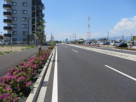榛東村のふるさと公園までサイクリング