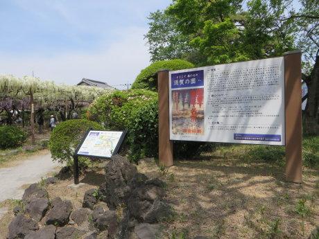 藤まつりの「須賀の園」