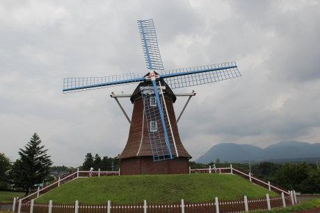 大胡ぐりーんふらわー牧場の風車とシャクヤク