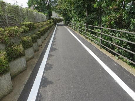 利根川サイクリングロードの舗装工事も