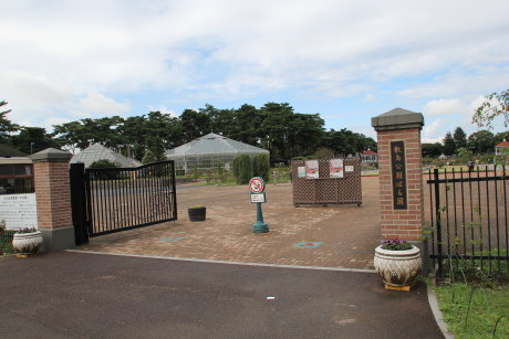 秋のバラフェスタが行われる敷島公園ばら園