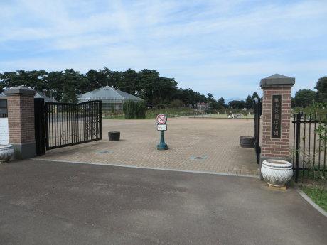 敷島公園ばら園のほうは・・・