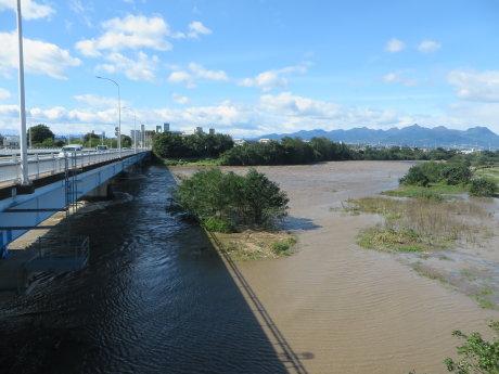 利根川増水してました