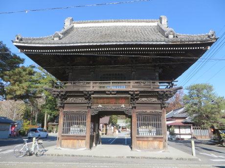 玉村八幡宮の昇龍の松・勝運の松