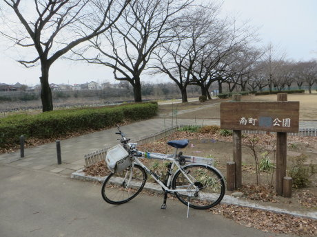 南町公園の河津桜が咲きだしていました
