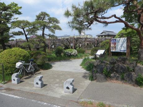 藤が咲きだした「須賀の園」
