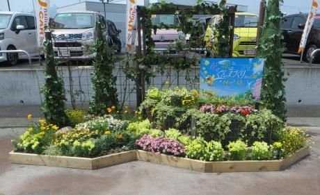 吉岡町には街なかに花と緑の花壇が