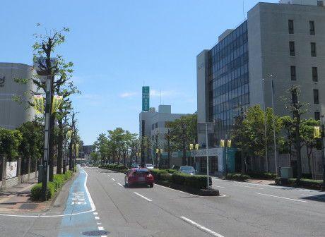 新前橋駅周辺のムクドリ対策