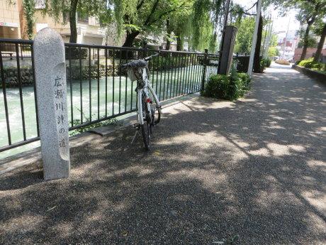 暑い日には広瀬川詩の道へ
