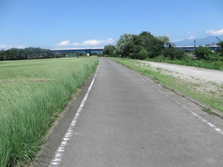 利根川サイクリングロードを通って大正橋へ