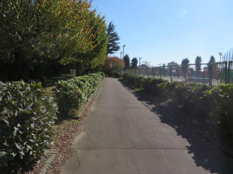 群馬県立近代美術館までサイクリング