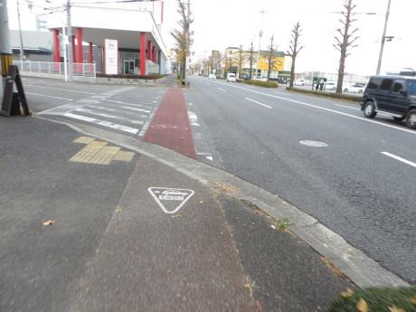 榛東村のろうばいの里までサイクリング