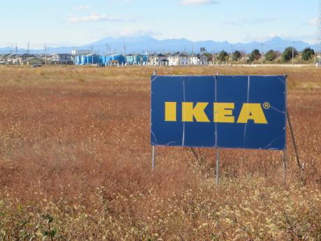 今年もIKEAの工事は・・・