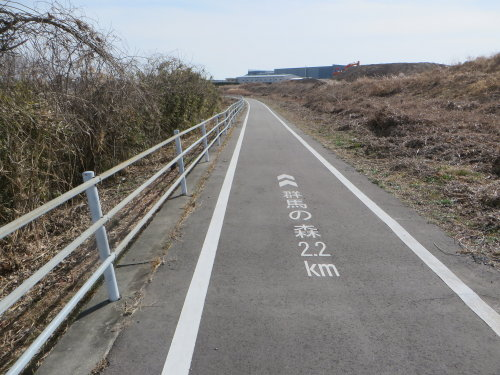 井野川サイクリングロード通行止め解除と新しい下滝橋