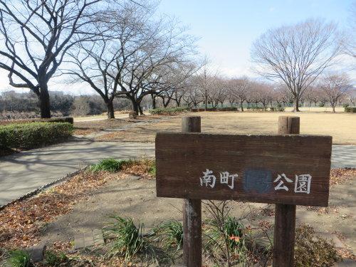 南町公園は桜の名所