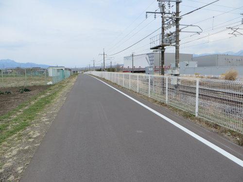 剣城歩道橋近くの桜が満開!
