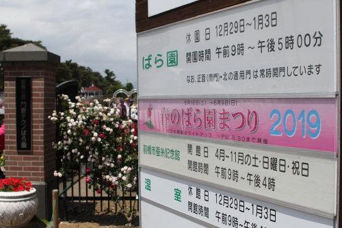 敷島公園門倉テクノばら園で「春のばら園まつり」