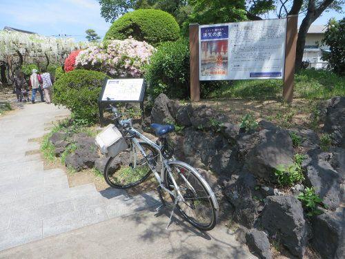 藤の花が見たくて須賀の園へ