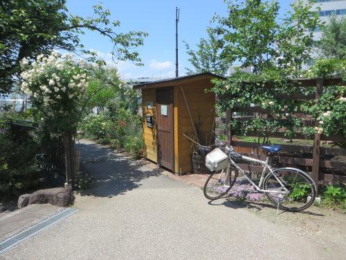 高崎公園のSymphony Garden