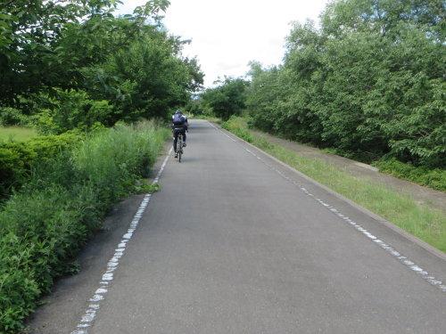 小野池あじさい公園までサイクリング