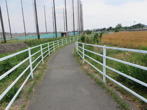 浜川公園の人道橋は出来上がったようですが