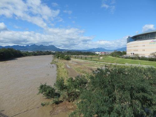 台風で利根川サイクリングロードは