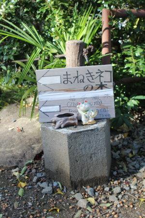 少林山のまねきネコの木